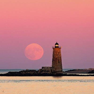 Photograph - Super Moon 2016 by Robert Clifford
