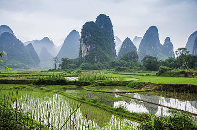 Photograph - The Beautiful Karst Rural Scenery In Spring by Carl Ning