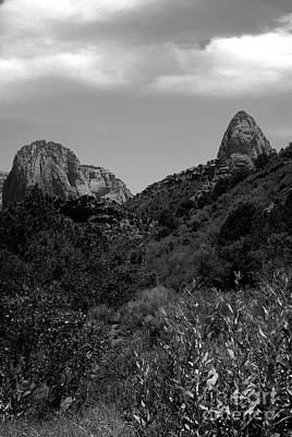 Photograph - Zion National Park Utah by Bob Pardue
