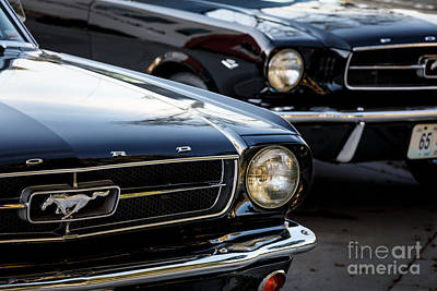 Photograph - '65 Mustangs by Dennis Hedberg