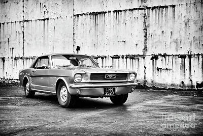 Photograph - 66 Mustang by Tim Gainey
