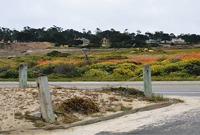 Photograph - 17-mile Drive by Marian Jenkins