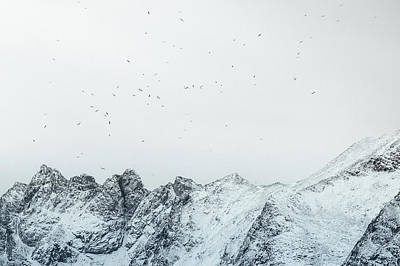Arctic Landscape In Northern Norway, Tromso Region Art Print