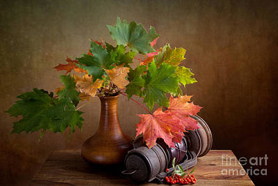 Maple Leafs Photograph - Autumn by Nailia Schwarz