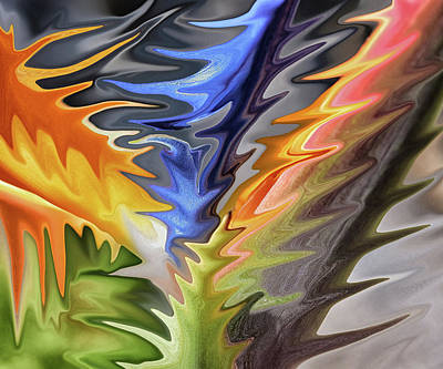 7 Bird Of Paradise Abstract II Art Print
