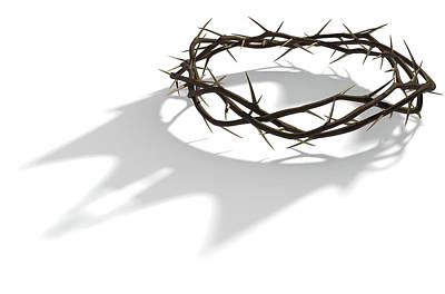 Barbed Digital Art - Crown Of Thorns With Royal Shadow by Allan Swart