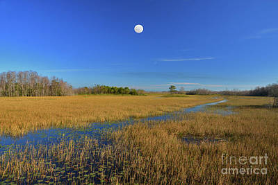 Photograph - 7- Everglades Moon by Joseph Keane