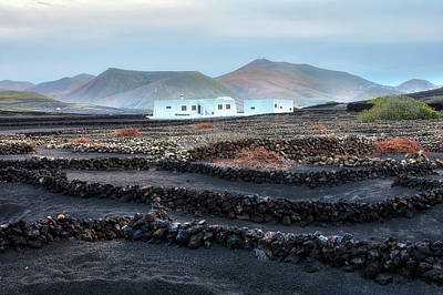 Vinery Photograph - La Geria - Lanzarote by Joana Kruse