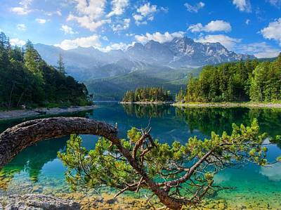 Nature Digital Art - Landscape by Maye Loeser