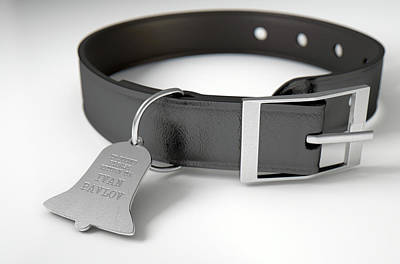 Dogs Digital Art - Leather Collar With Tag by Allan Swart