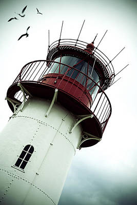 Seagull Photograph - Lighthouse by Joana Kruse