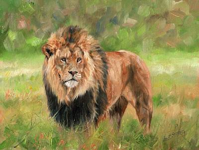 King Cat Painting - Lion by David Stribbling