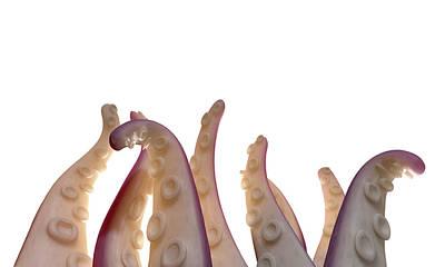Monster Digital Art - Monster Tentacles Isolated by Allan Swart
