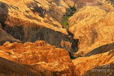 Brown Photograph - Moonland Ladakh Jammu And Kashmir India by Rudra Narayan  Mitra