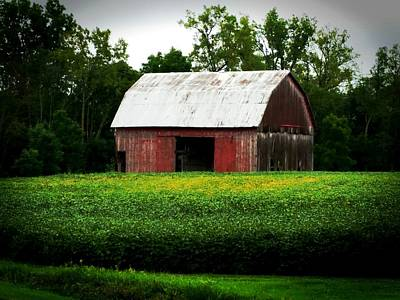 Photograph - Red Barn by Michael L Kimble
