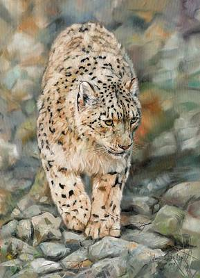 Elusive Painting - Snow Leopard by David Stribbling