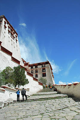 Photograph - The Potala Palace by Carl Ning