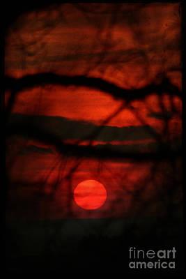 The Sunset Art Print by Angel Ciesniarska