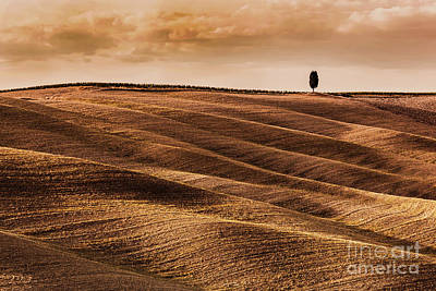 Photograph - Tuscany Fields Autumn Landscape, Italy. Harvest Season by Michal Bednarek