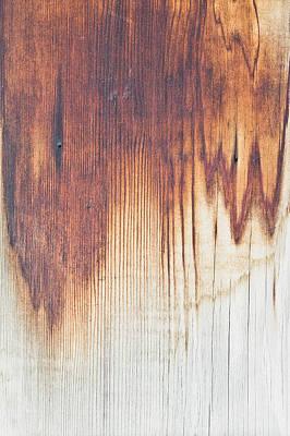 Wood Texture Art Print by Tom Gowanlock