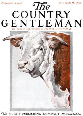 1916 Photograph - Cover Of Country Gentleman Agricultural by Remsberg Inc