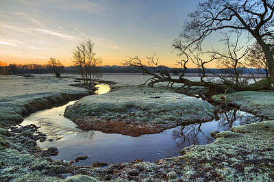 Winter Mornings Photograph - New Forest - England by Joana Kruse