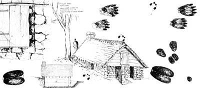 Drawing - 7.11.usa-3-detail-c by Charlie Szoradi