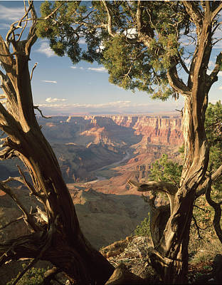 Photograph - 713261 V Desert View Grand Canyon by Ed Cooper Photography