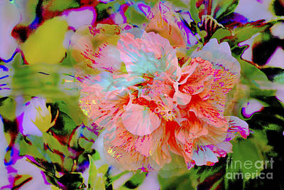 Photograph - 72- Hibiscus Dream by Joseph Keane
