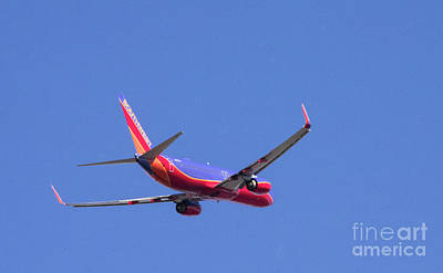 Photograph - 737-800 by Louise Magno