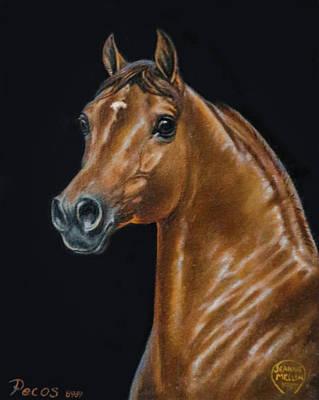 Morgan Horse Painting - #75 - Pecos by Jeanne Mellin Herrick