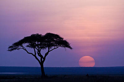 African Sunrise Art Print
