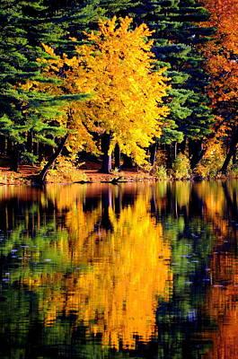 Autumn Colors Original