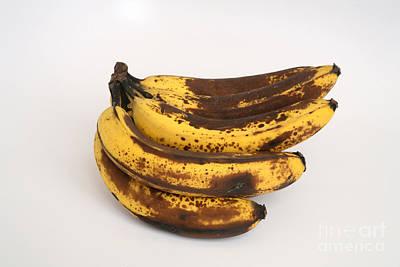Banana Ripening Sequence Art Print