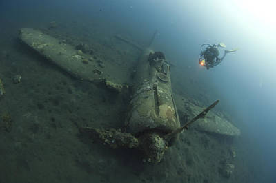 Diver Explores The Wreck Print by Steve Jones