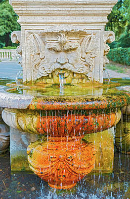 Photograph - Drinking Fountain In Rome, Italy by Marek Poplawski