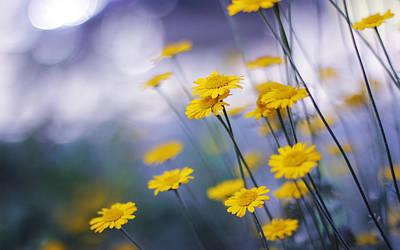 Summer Digital Art - Flower by Maye Loeser