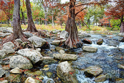 Photograph - Guadalupe River by Savannah Gibbs