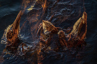Photograph - Ice Art by Michael Mogensen