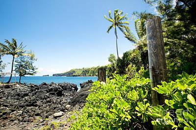Photograph - Keanae Maui Hawaii by Sharon Mau