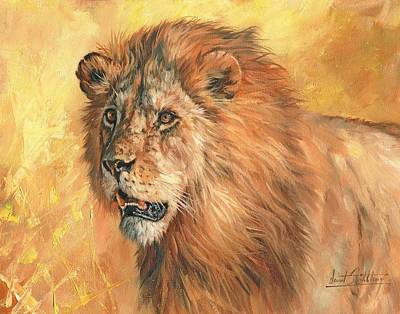 Big Cats Painting - Lion by David Stribbling