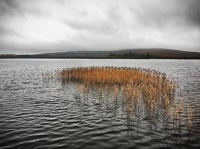 Photograph - Lough Fea by Colin Clarke