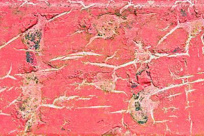 Red Metal Print by Tom Gowanlock