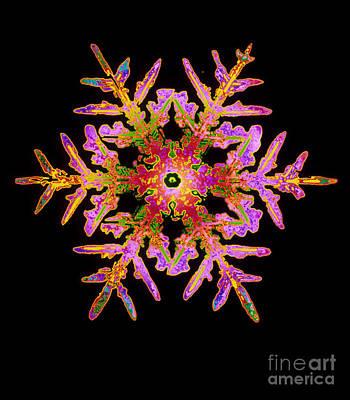 Photograph - Snowflake by Mehau Kulyk