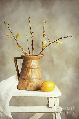 Element Photograph - Spring Still Life by Amanda Elwell