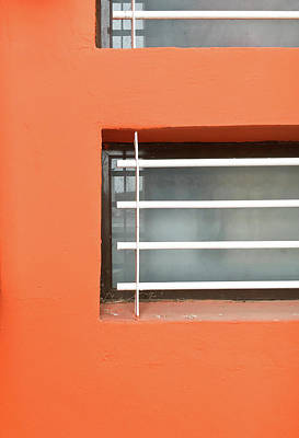 Window Bars Art Print by Tom Gowanlock