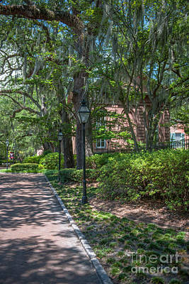 Photograph - Cofc Campus Stroll by Dale Powell