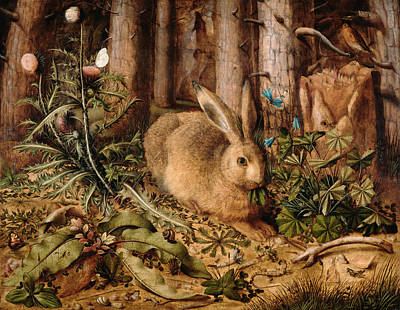 European Hare Wall Art - Painting - A Hare In The Forest by Hans Hoffmann