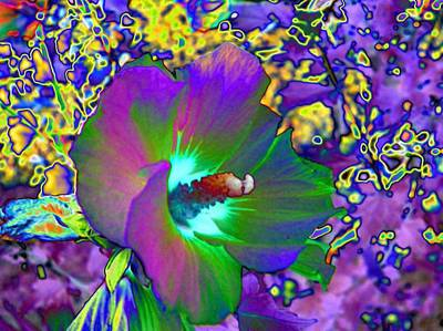 Brass Dragonfly Digital Art - Abstract Flowers by Belinda Cox