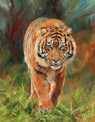 Tiger Painting - Amur Tiger by David Stribbling